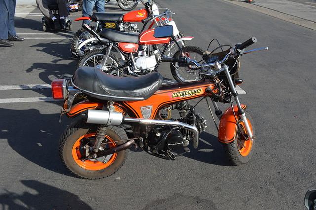 DSC 7809